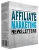 Thumbnail Affiliate Marketing Ecourse  PLR  Web Site Bonus  $2.49